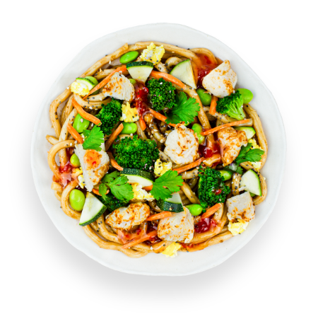 Japanese Chicken Udon Noodles