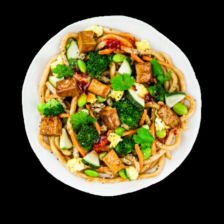 Japanese Tofu Udon Noodles