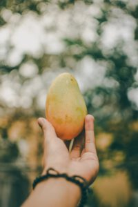 Mango: Tropenfrucht der Extraklasse